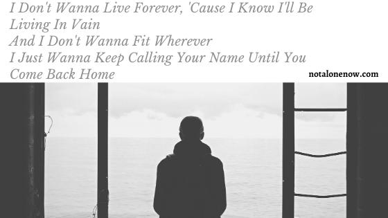 I Don't Wanna Live Forever Lyrics